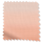Ombre Blush staal icoon